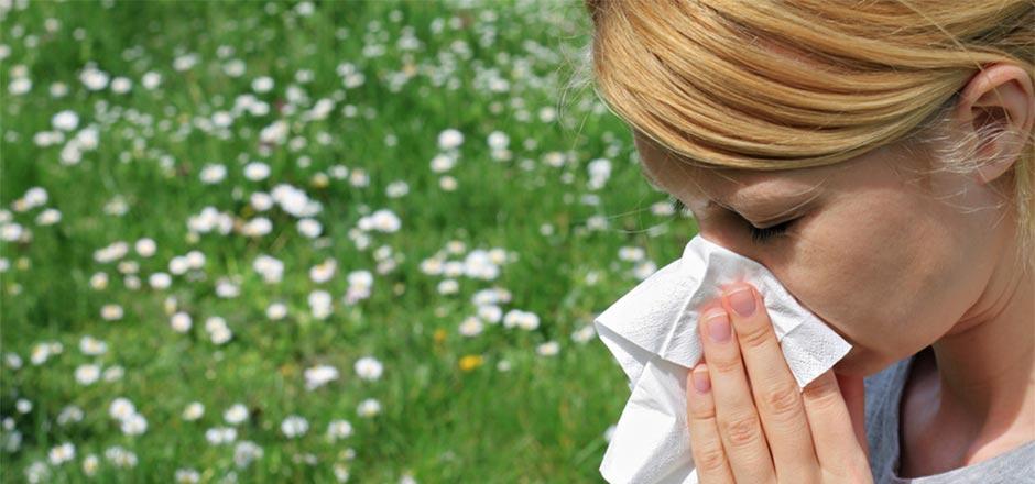 mutuelle sante allergie pollen. Black Bedroom Furniture Sets. Home Design Ideas
